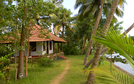 Coconut Island   Thrissur Coconut Island   Thrissur ...