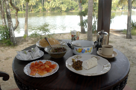 Breakfast in Coconut Island
