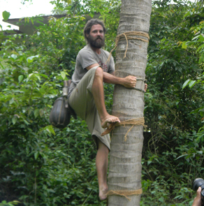 Coconut Climbing at Coconut Island